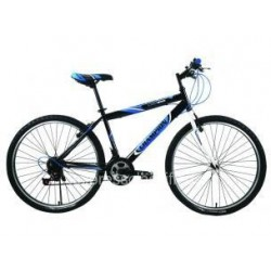 Champion YM-R4B 26'' Men's Bike