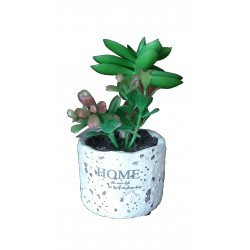 Flower with pot 15cm