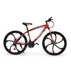 "Champion YM MB 31 26"" Bike"