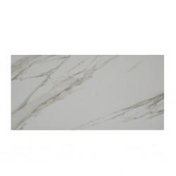 Tile Ref Tc36801 30x60cm
