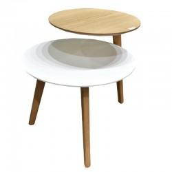 Ilina Coffee Table MDF White Oak & White