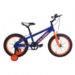 "Raleigh ENDURO2B16-18 16""..."